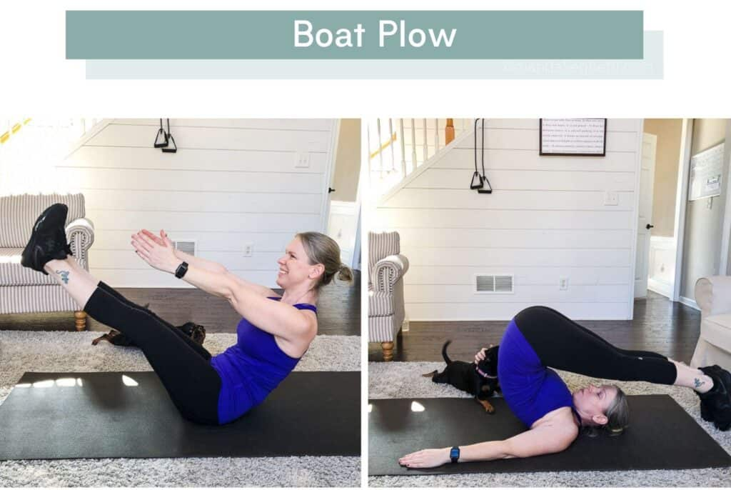 P90X3 Total Synergistics Boat Plow with my dog