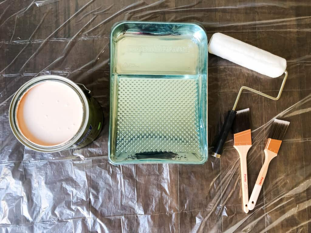 Sherwin Williams Infinity Paint and Purdy paint tools