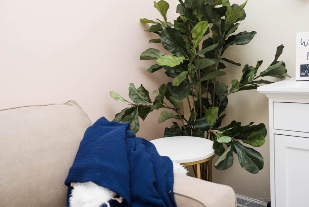 blue throw blanket on greige sofa sleeper