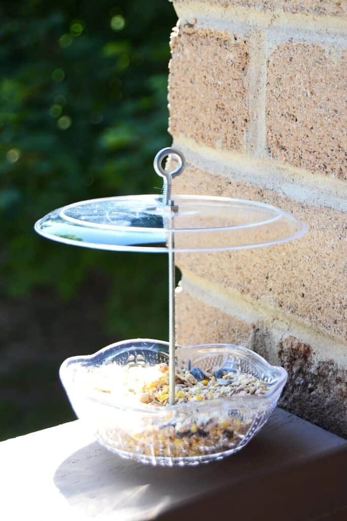 Easy and attractive bird feeder made from plastic dishware.