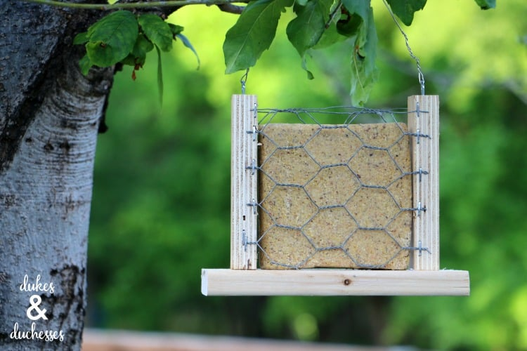 A simple suet feeder made from scrap wood and chicken wire.