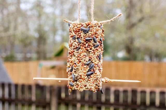 Cardboard Paper Roll Bird Feeder Sample 3 4 - Amanda Seghetti