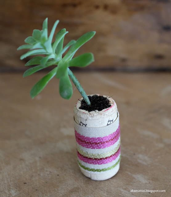 A Tiny succulent planter made from a wine cork.