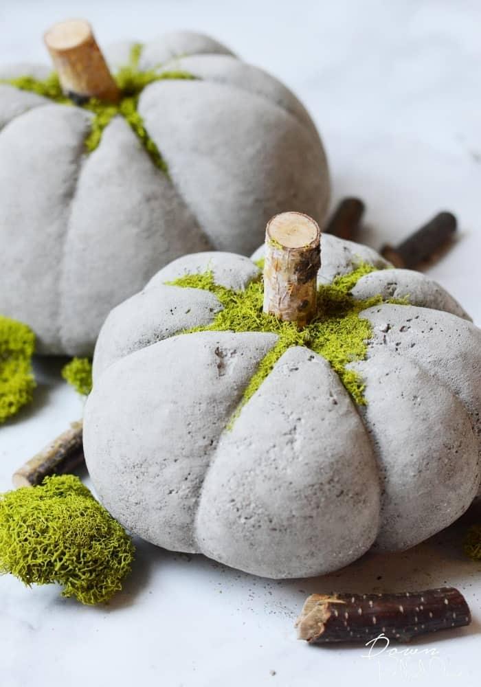 DIY Concrete Pumpkins Main Tall - Amanda Seghetti