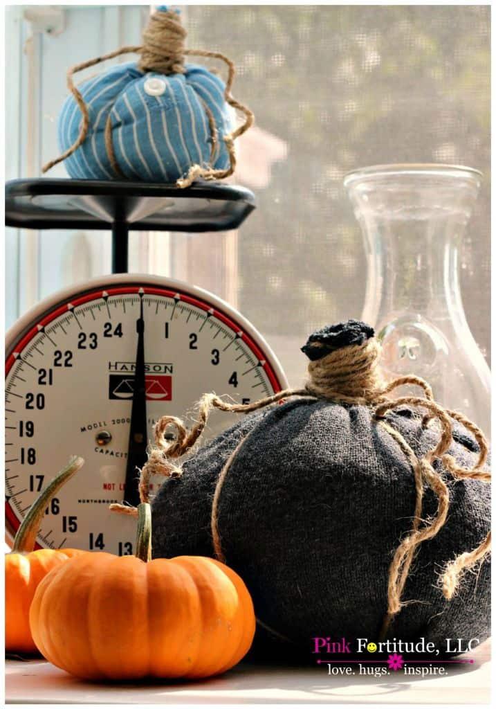 Shirt Pumpkins 7 - Amanda Seghetti