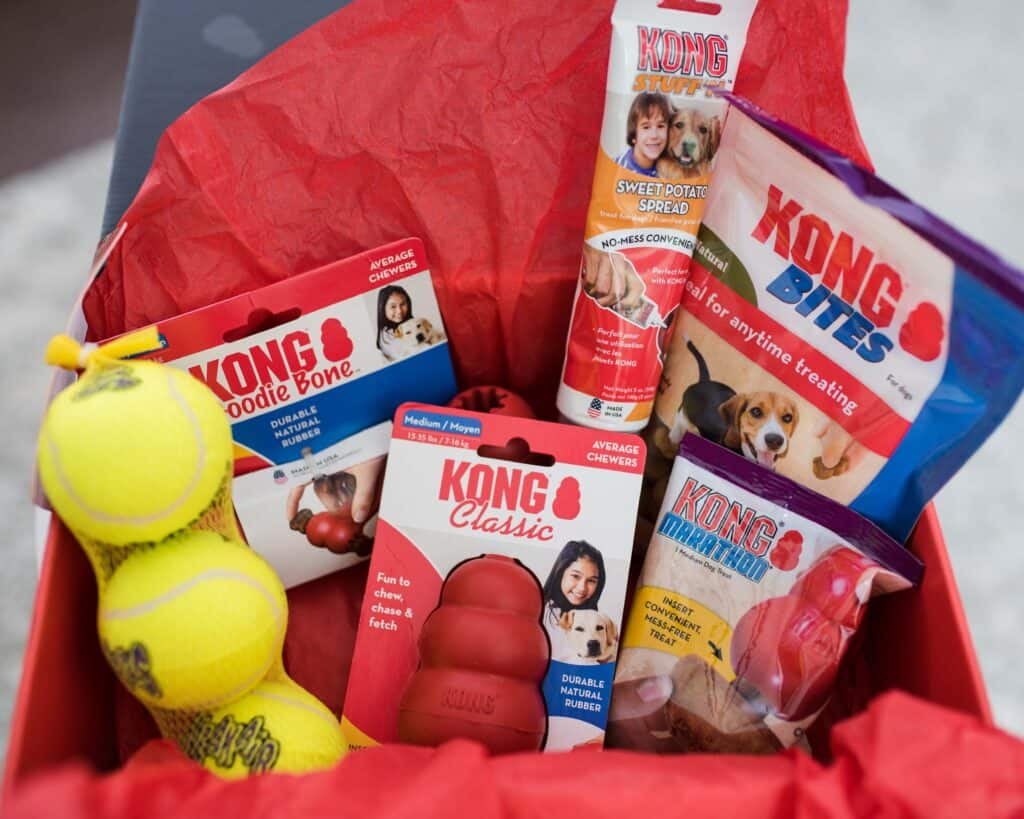 kong box gift for dogs