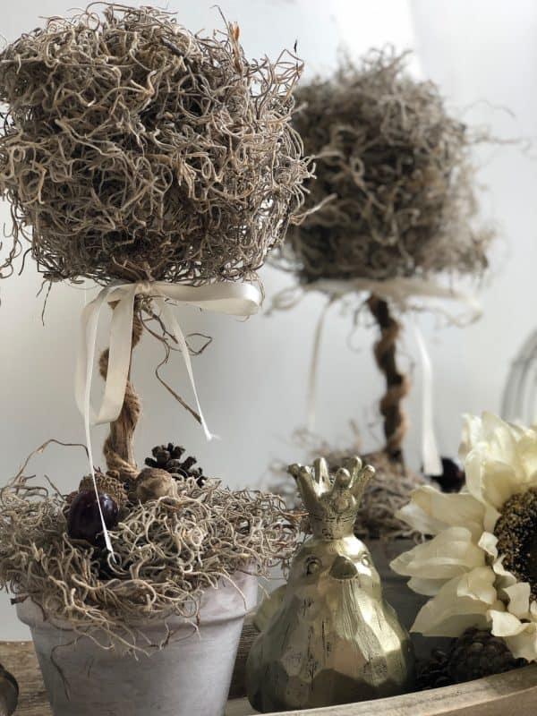 moss topiary tree diy7 600x800 1 - Amanda Seghetti