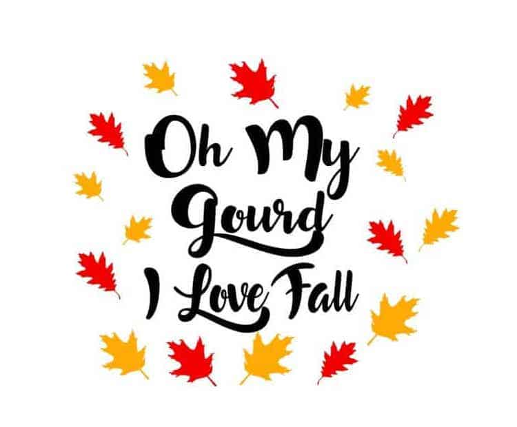oh my gourd i love fall svg