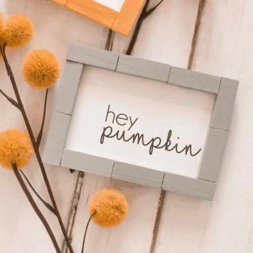 pumpkin frame - Amanda Seghetti