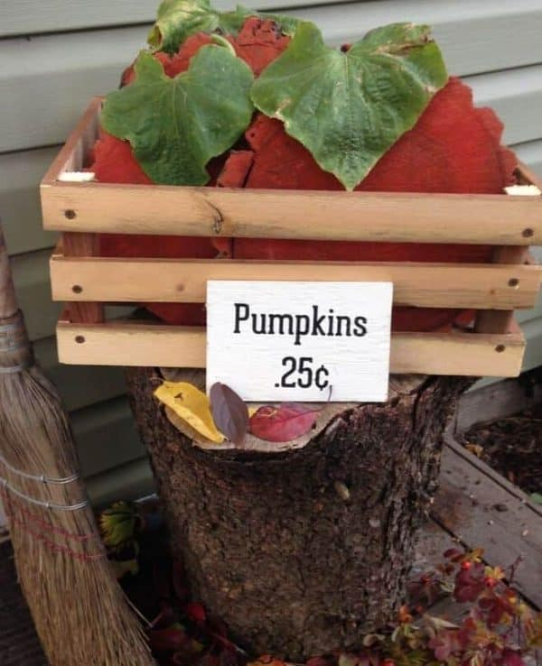 crate for pumpkin decor
