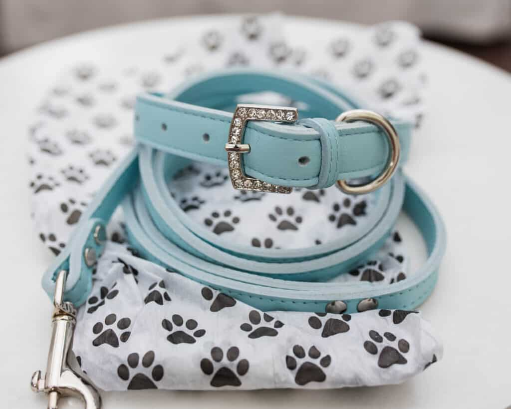 pawsitive vibes baby blue bling leash and dog collar