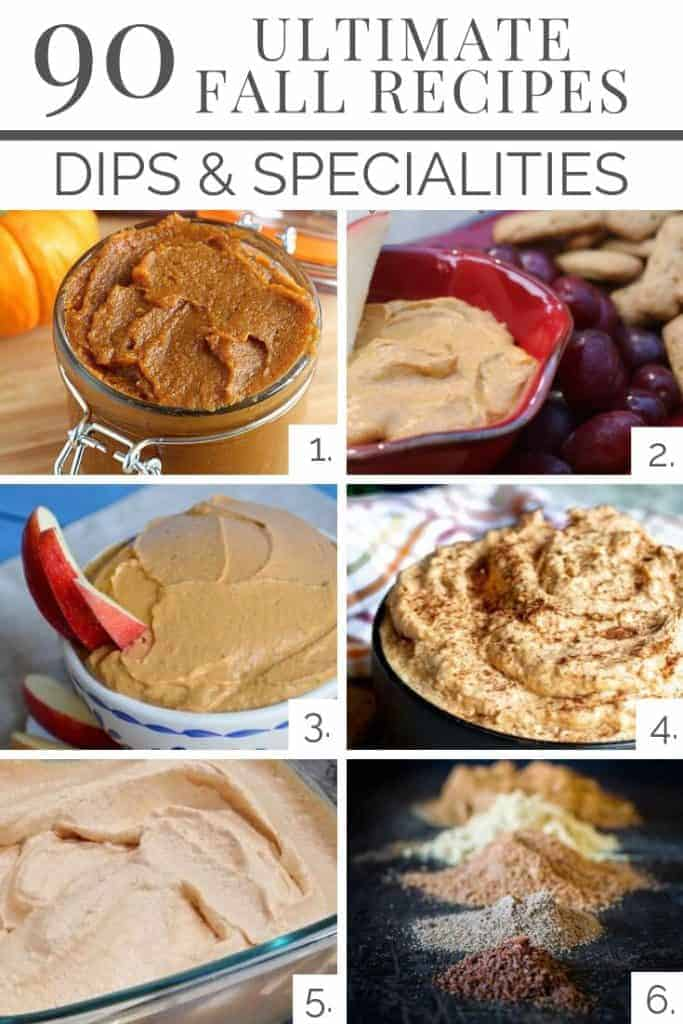 Pumpkin Dips & Specialty Recipes from our Ultimate Fall Recipe List of 90 Amazing Recipes to keep the chill at bay!