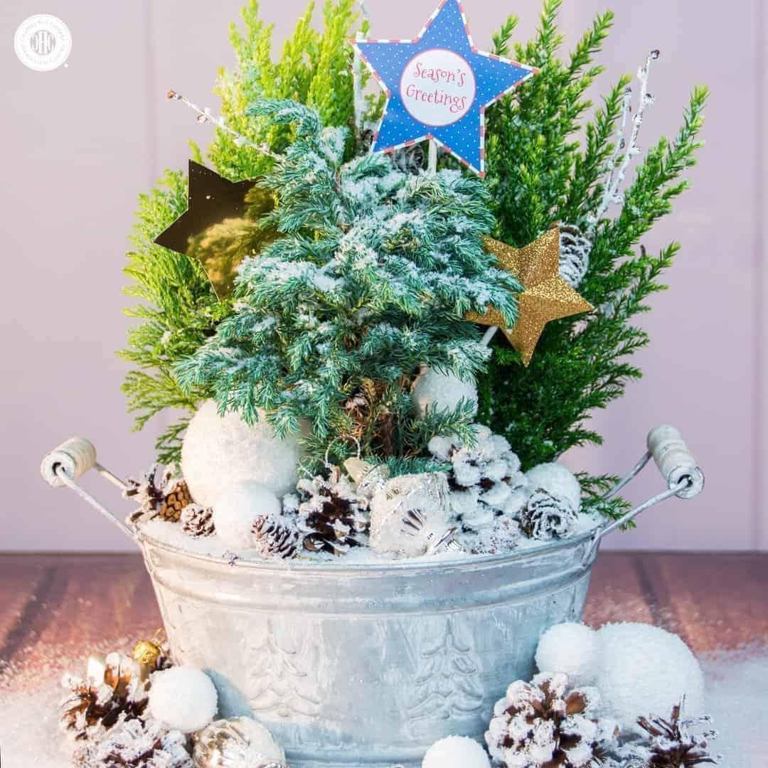 Country Hill Cottage Sparkly Winter Fairy Garden Flower Arranging Tutorial 02 - Amanda Seghetti
