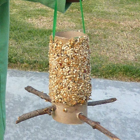 easy homemade bird feeder craft.jpgfit4842c482ssl1 - Amanda Seghetti