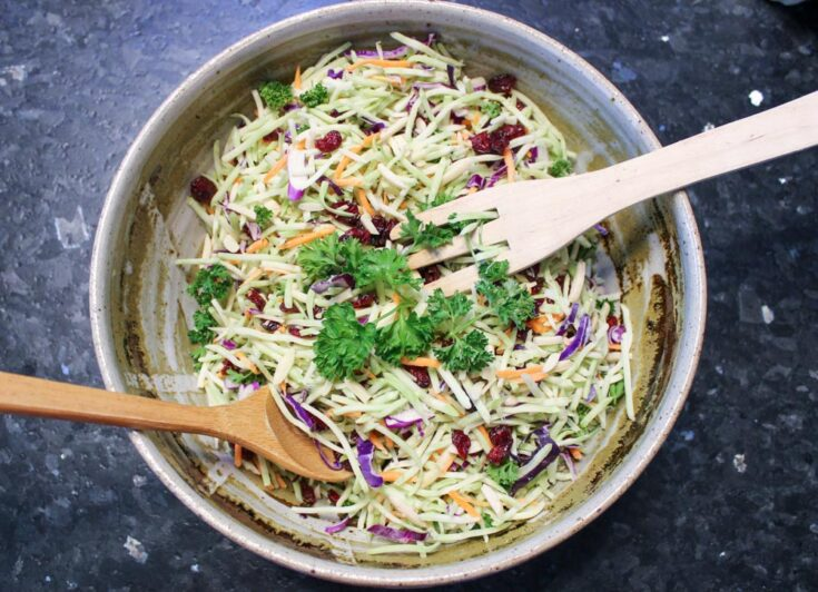 Broccoli Slaw Salad3 - Amanda Seghetti