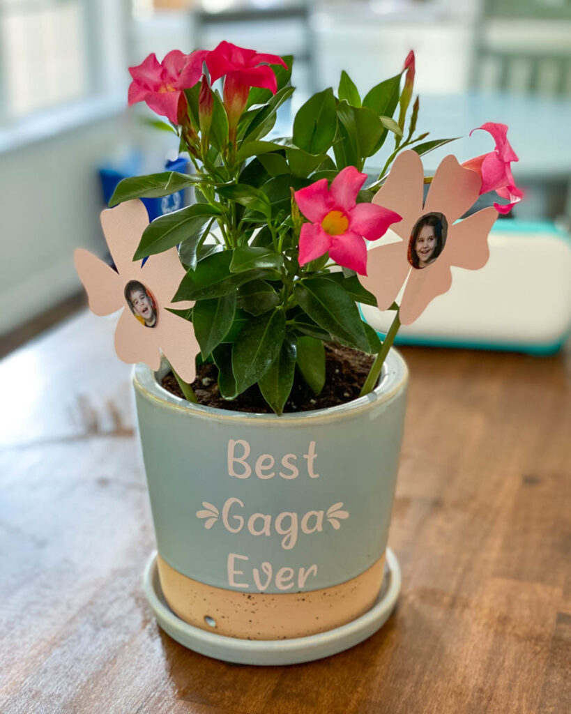 diy mothers day gift flower pot