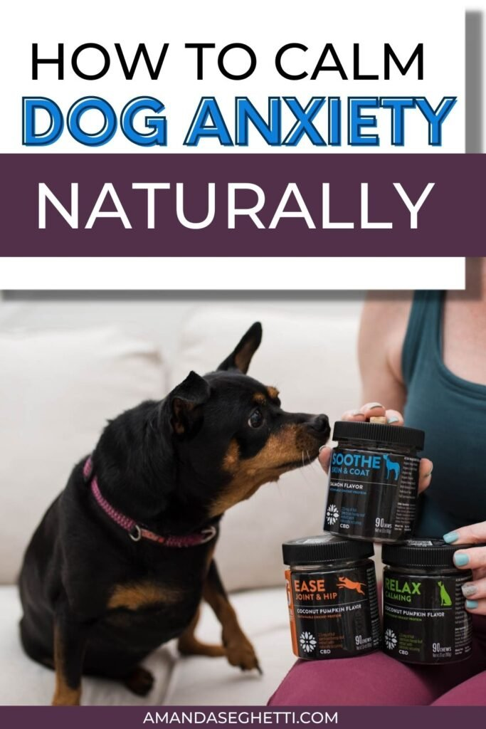 how to calm dog anxiety naturally